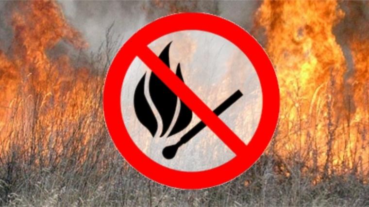О начале пожароопасного периода в Мурманской области  в 2019 году