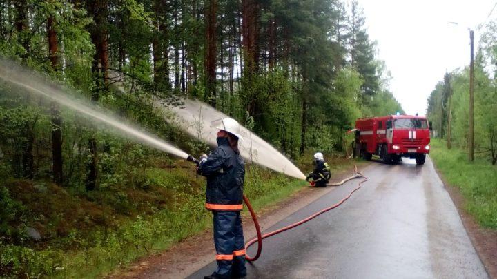 Прошло совместное пожарно-тактическое занятие по защите населенного пункта от угрозы лесного пожара